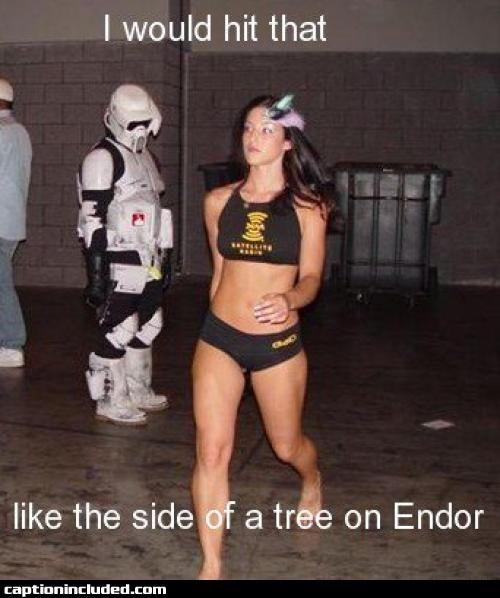 I Would Hit That Star Wars Humor Endor Star Wars Memes