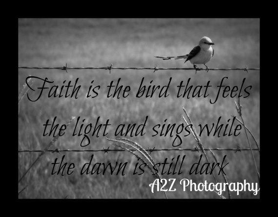 Quotes About Birds Faith Is The Bird Quote Printa2Zphotography On Etsy $20.00 .