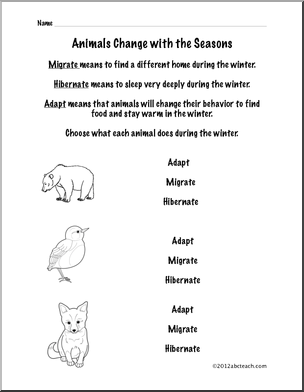 Printables Animal Adaptations Worksheets 1000 images about adaptation on pinterest a snake snow goose and national geographic channel
