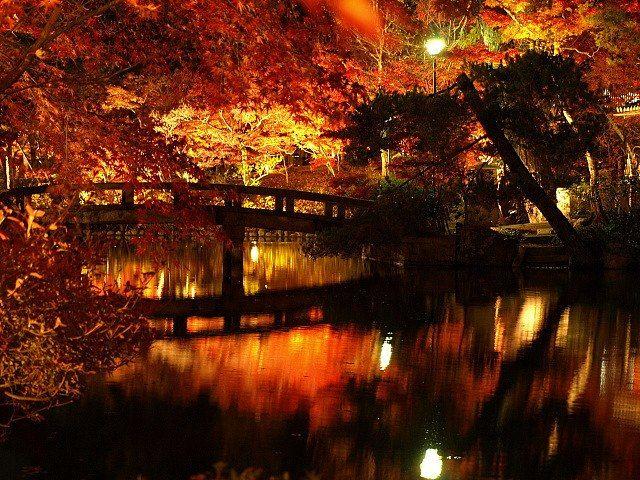 Outono no Eikando em Kyoto, Japão