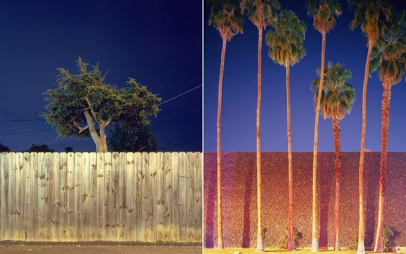 Ethan Pines :: Night Trees and it sees Los Angeles (and beyond) trees as these personalities that guard, decorate, envelop, or enhance places where people congregate.