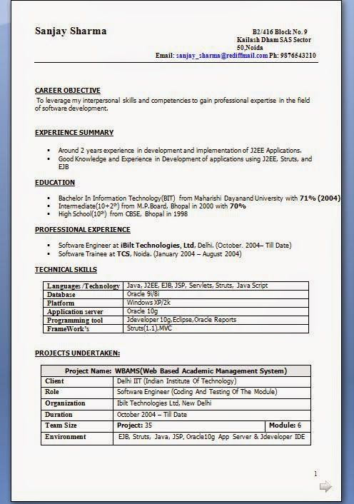 how to build a cv Sample Template Example ofExcellent CV \/ Resume - j2ee jsp resume