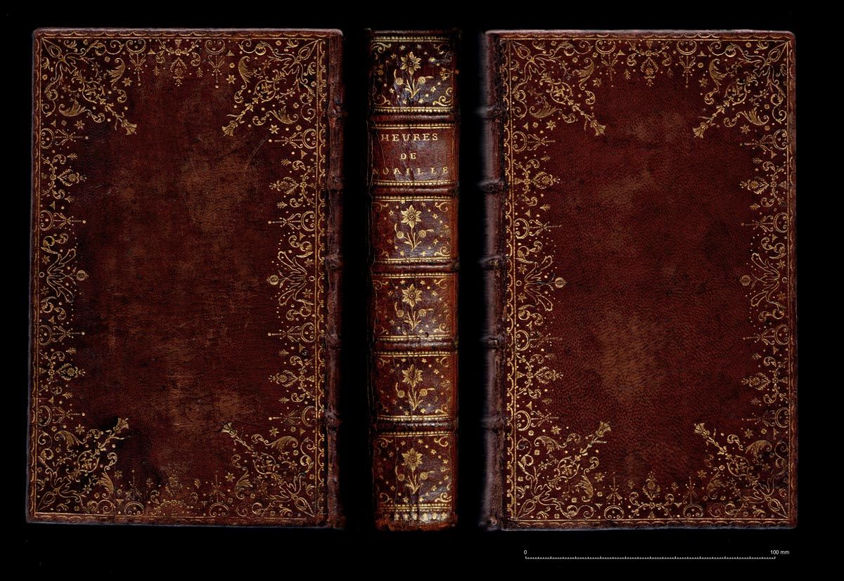 Dubuisson Early Works Leather Book Covers Book Texture Book Spine