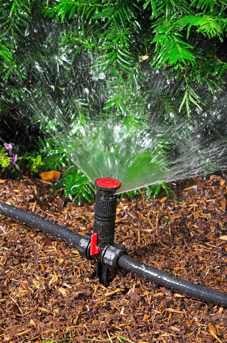 10 Ways On Raising Humidity In Grow Tent Budgetwise In 2020 Sprinkler System Diy Diy Landscaping Front Yard Decor