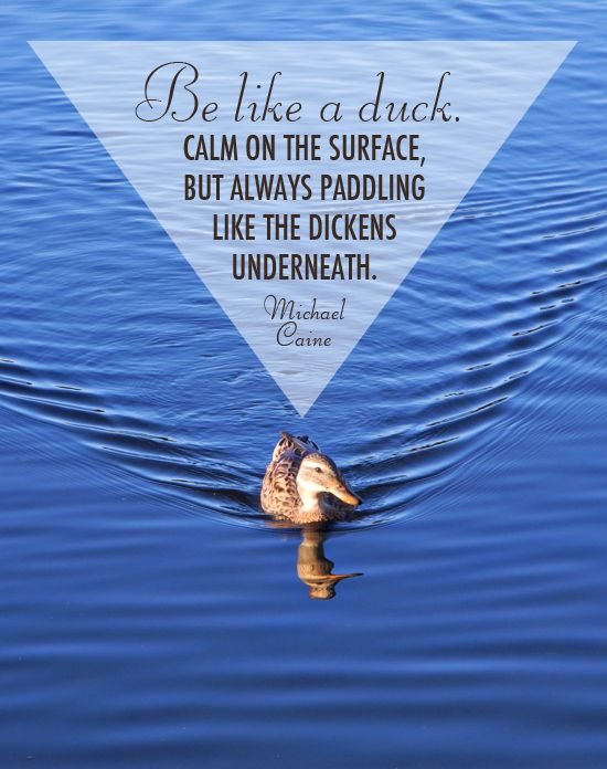 Be Like A Duck Calm On The Surface But Always Paddling Like The