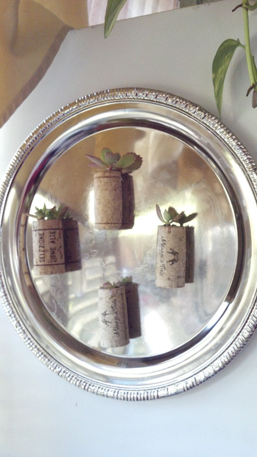 Wine corks planters living wall art planters with live succulents