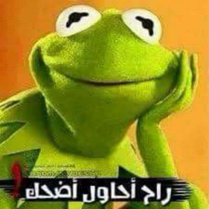 Arabic Funny, Funny Arabic Quotes