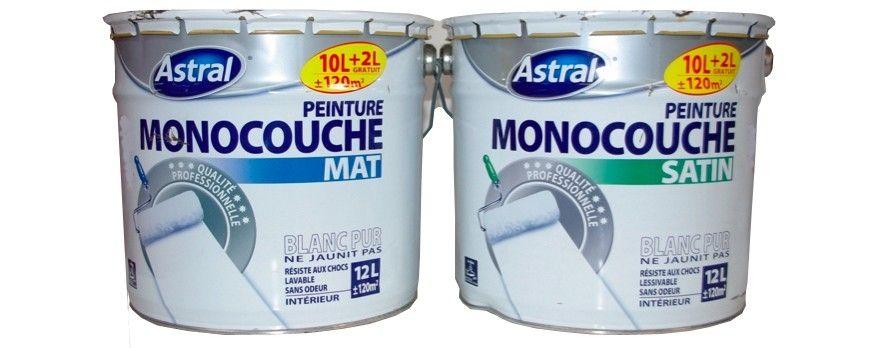 ASTRAL Monocouche 12L Satin et Mat chez Peinture Destock, le - peinture bois et fer