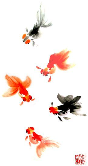 Goldfish Culture Goldfish Art Watercolor Fish Goldfish