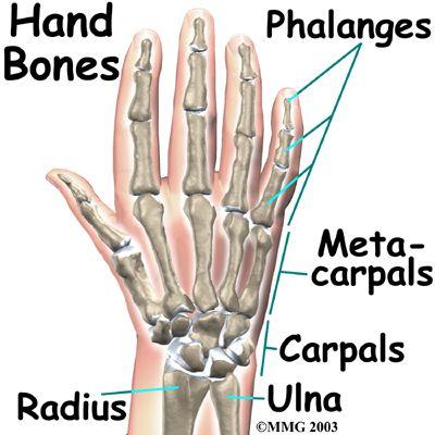 Yoga Tip Hands Fingers Position In Downdog Nikkiyoga Yoga