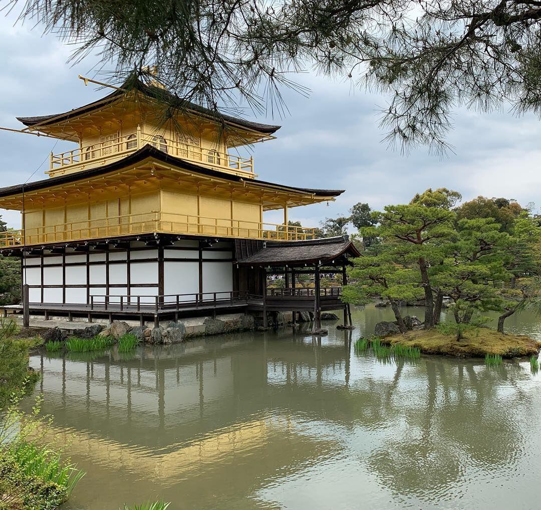 #japan #kyoto #goldenpavilion #holiday #travel #visit #beautifulplaces # Japonia  jest pięknie   #japan #kyoto #goldenpavilion #holiday #travel #visit #beautifulplaces # Japonia  jest pięknie