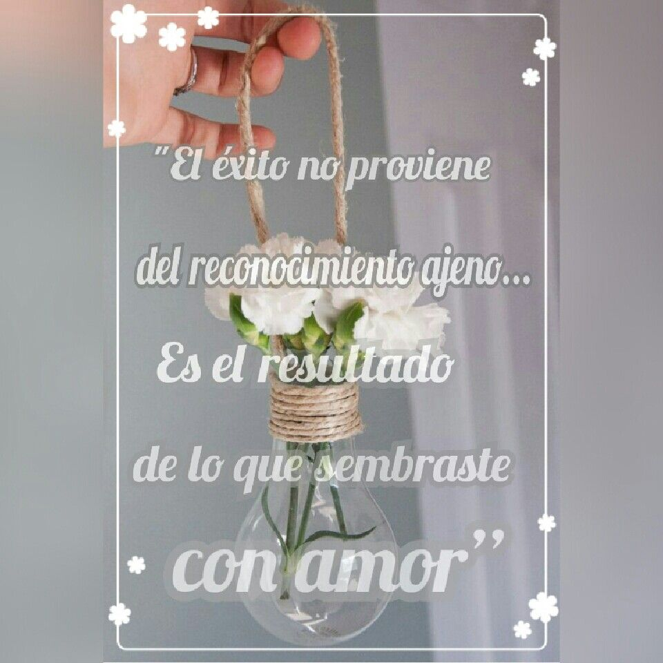 """""""El #éxito no proviene del reconocimiento ajeno. Es el #resultado de lo que #sembraste con #amor"""""""