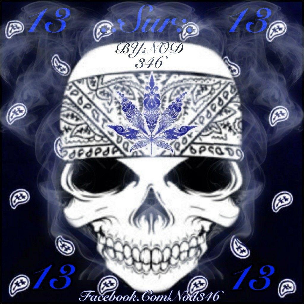 Skull Calavera Sur 13 Arte Paño Azul