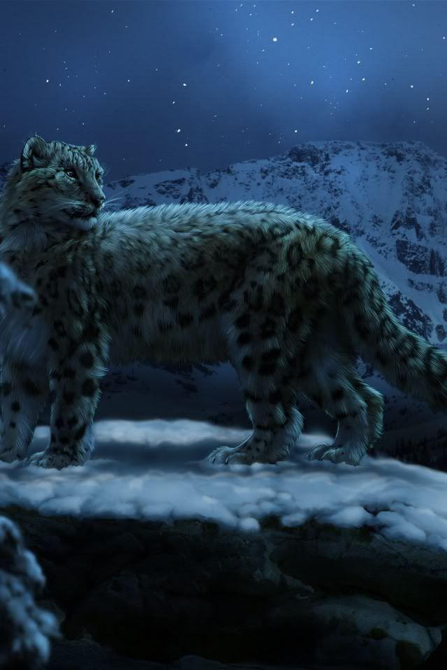 Snow Leopard Animal At Night Painting Art Iphone Wallpaper Background Leopard Wallpaper Snow Leopard Art Leopard Art