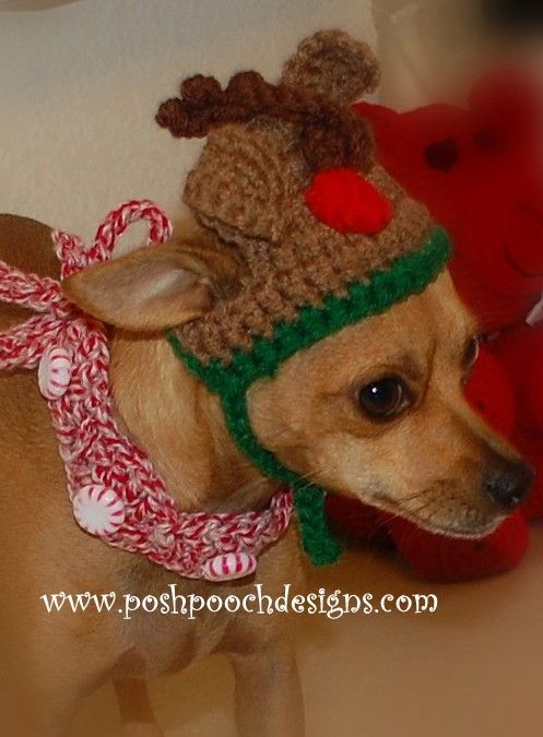 Peppermint Dog Collar Crochet Pattern Add This Crochet Pattern To