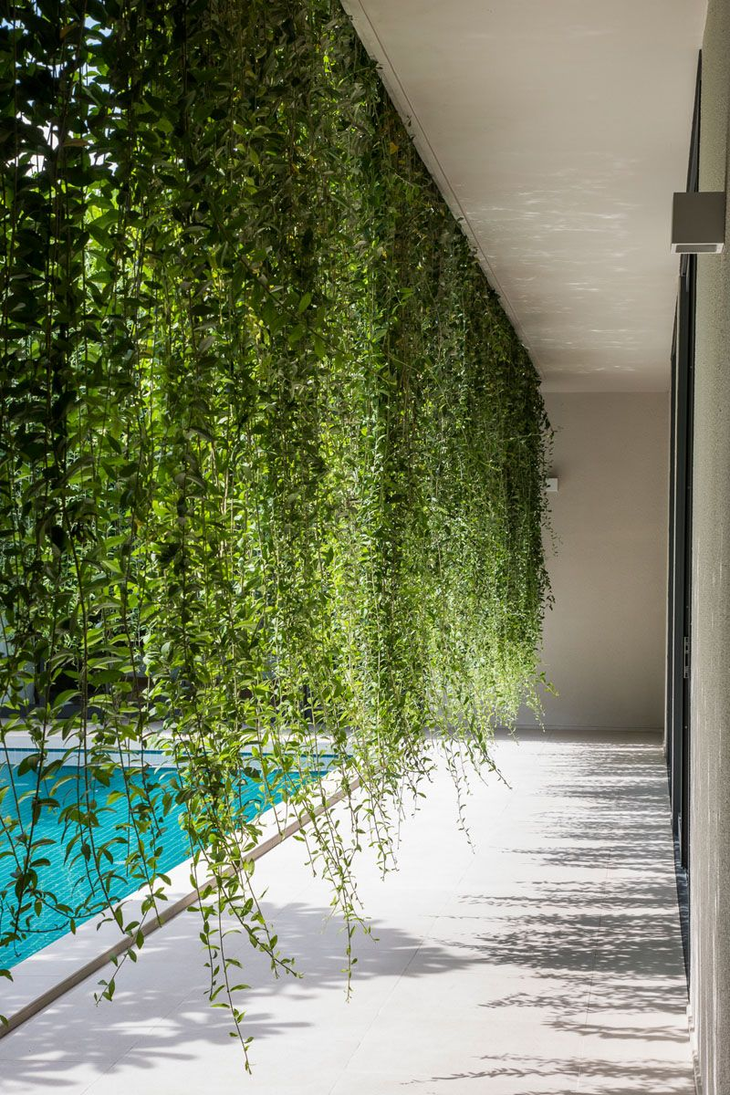 Landscaping Ideas  Hanging gardens provide a lush environment and privacy for interior rooms