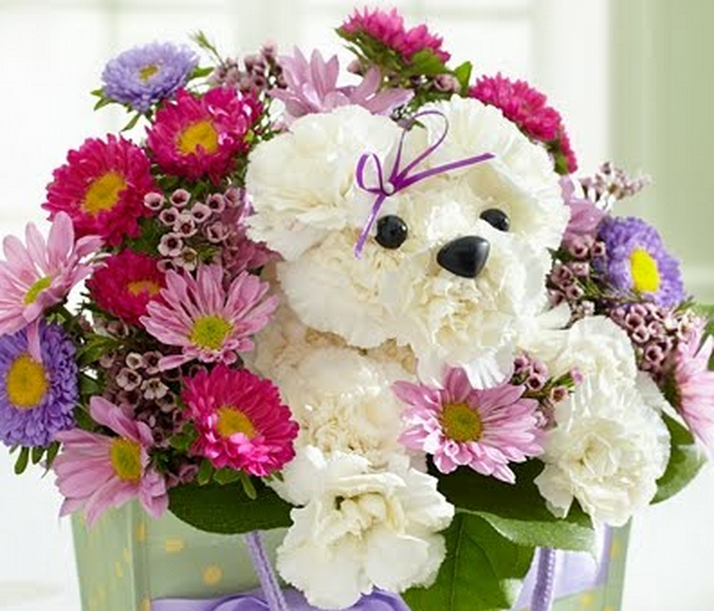 Puppy Bouquet Instructions Watch The Video Tutorial   Crafts ...