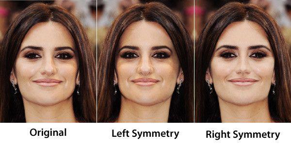 Face Symmetry Of Celebrities Face Symmetry Beauty Body Girl Olive Oil Hair