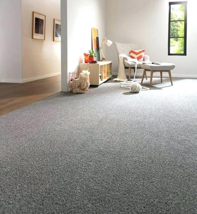 Image Result For Light Grey Carpet White Walls Grey Carpet Living Room Home Carpet Carpet Colors