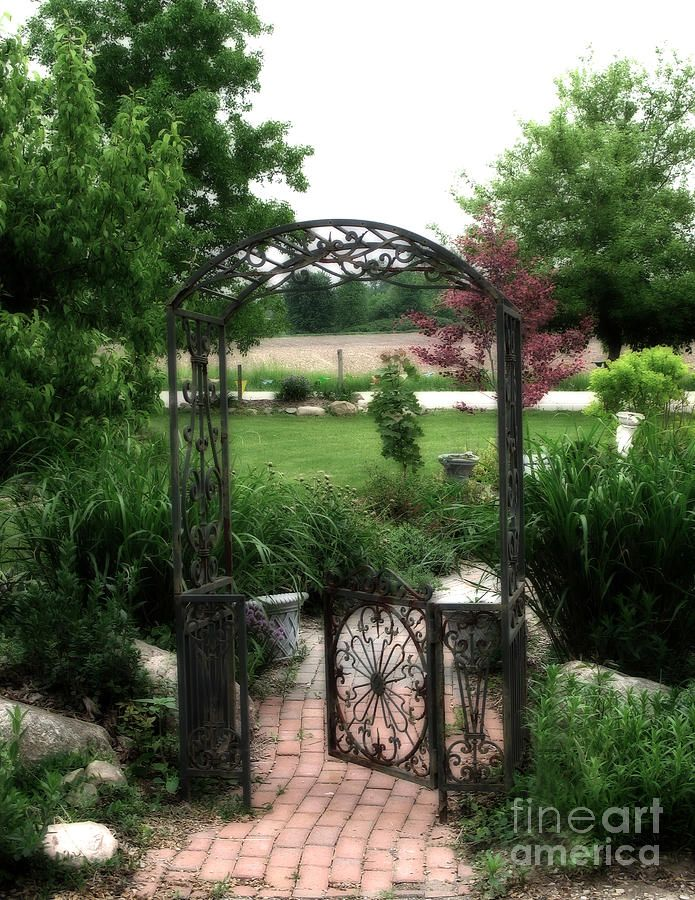 17 Best images about Arbors Trellises on Pinterest Gardens