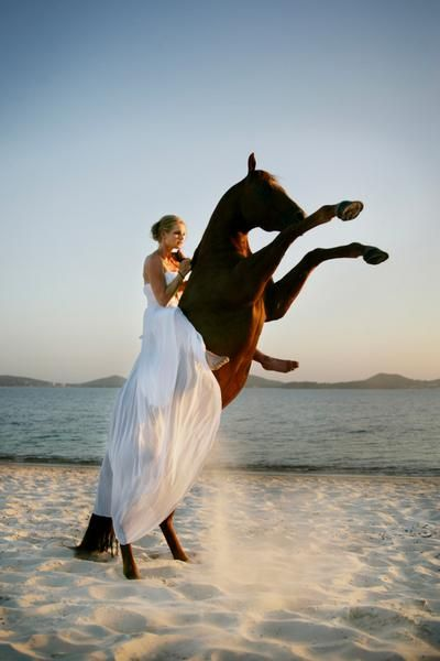 Fashion Portrait With Rearing Horse On A Gorgeous Sunlit Sunset Evening Beach That Dress That Beautiful White Gown F Woman Riding Horse