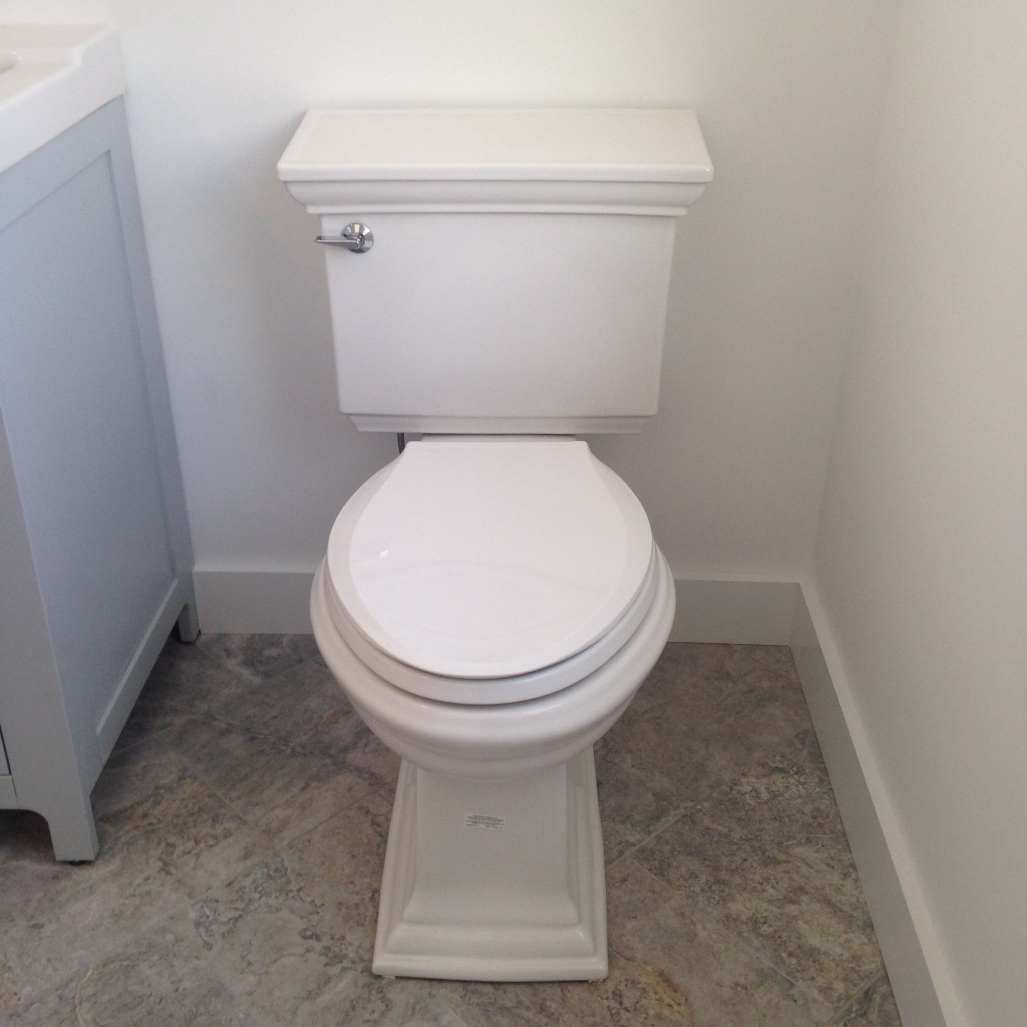 Kohler toilet with soft close seat. | Kohler toilet, Powder room