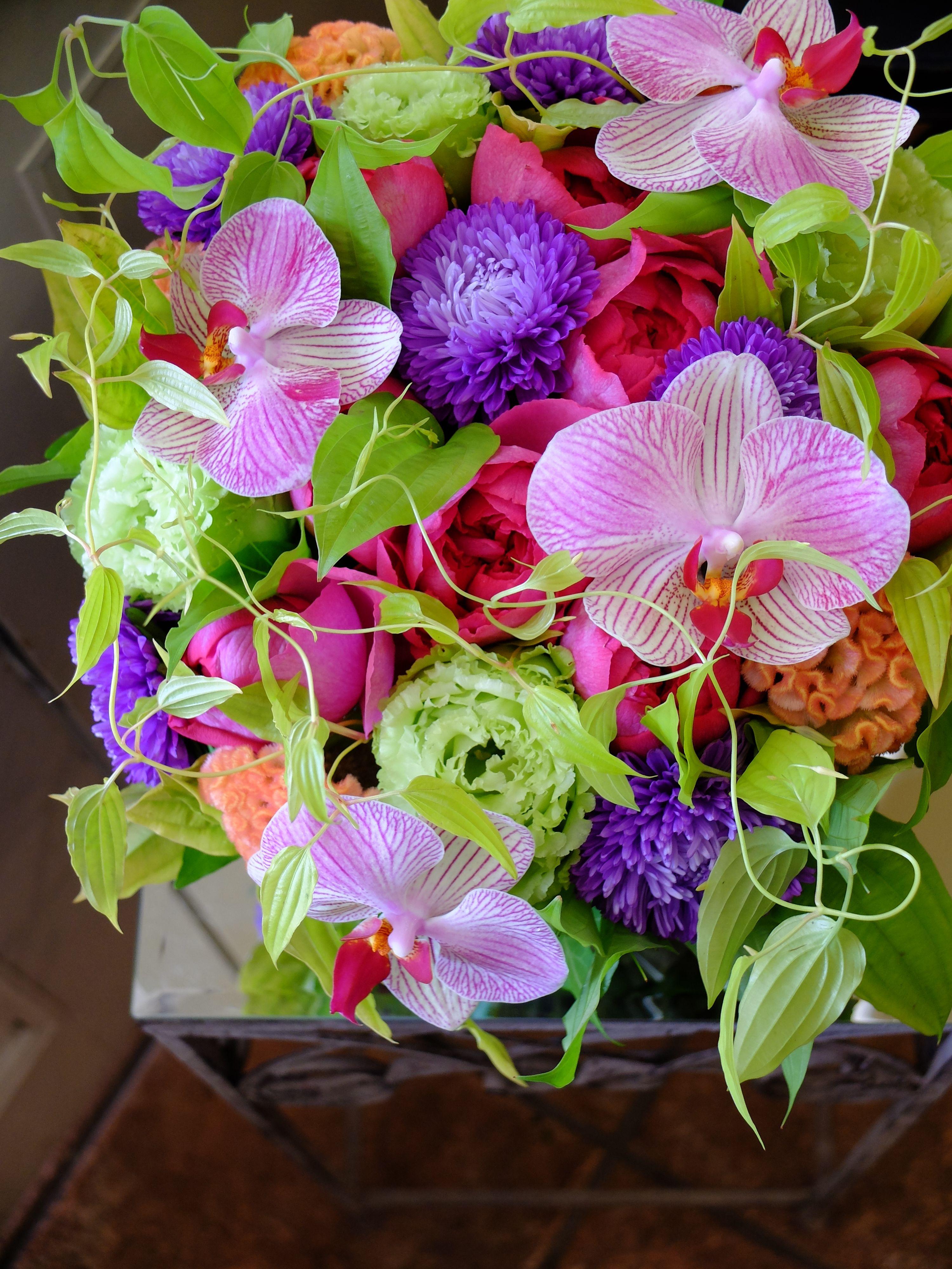 Orchidrose and aster bloemetjes pinterest aster orchid and orchidrose and aster izmirmasajfo