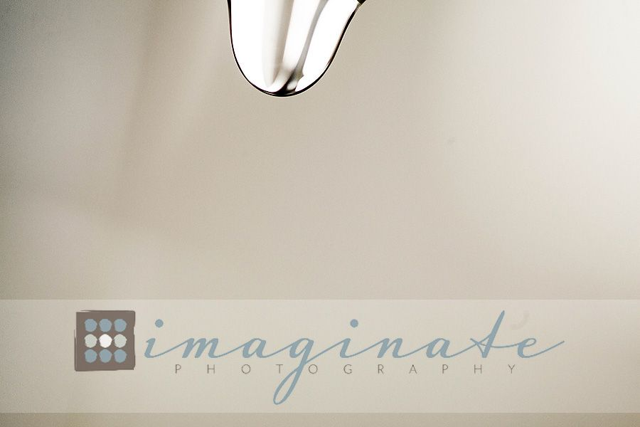 Macro Monday, water drops  ©Imaginate Photography
