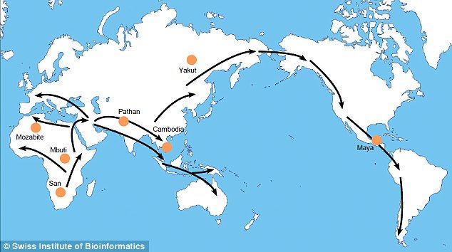 Our journey out of africa made us sickly africa and early humans some 50000 years ago modern humans left africa travelling first to asia and then furthe gumiabroncs Choice Image