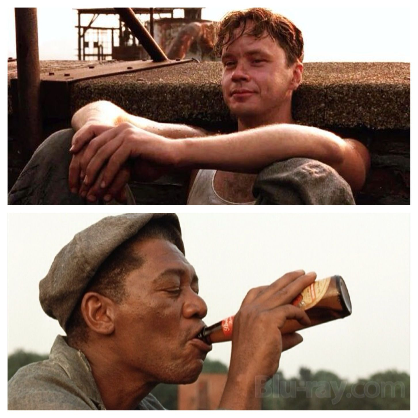 The Shawshank Redemption 1994 Red Narrating We Sat And Drank With The Sun On Our Shoulders A The Shawshank Redemption Redemption Full Movies Online Free