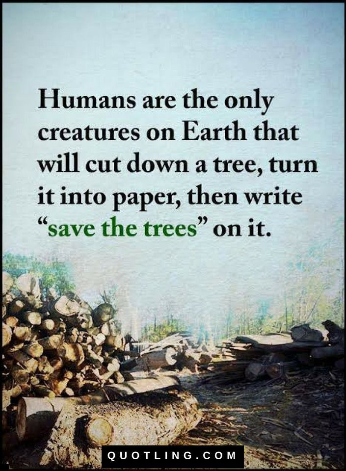 Humans are the only creatures on Earth that will cut down a tree - Quotes