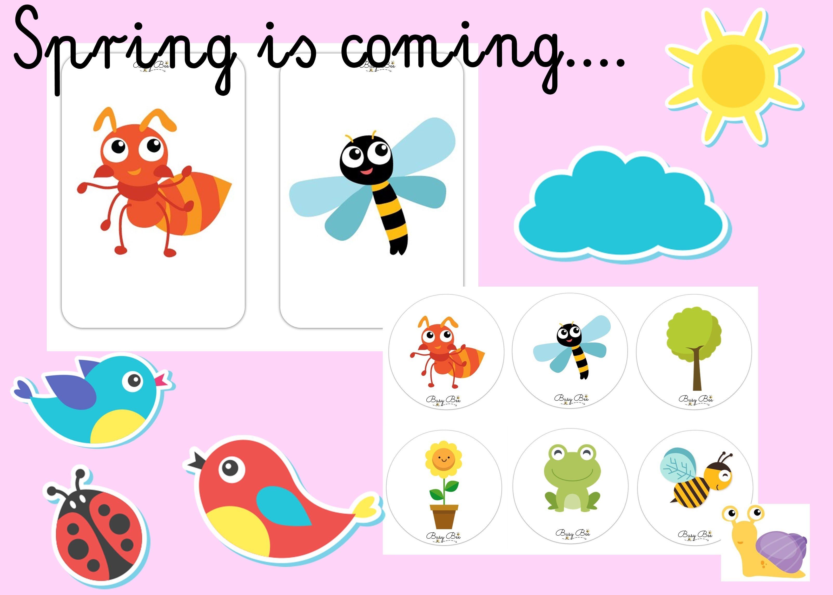Flashcards, memory game, Spring