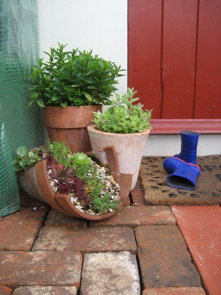 gebrochene Terrakotta Töpfe für Sukkulenten Arrangements КВІТИ - pflanzen topfen kubeln terrasse