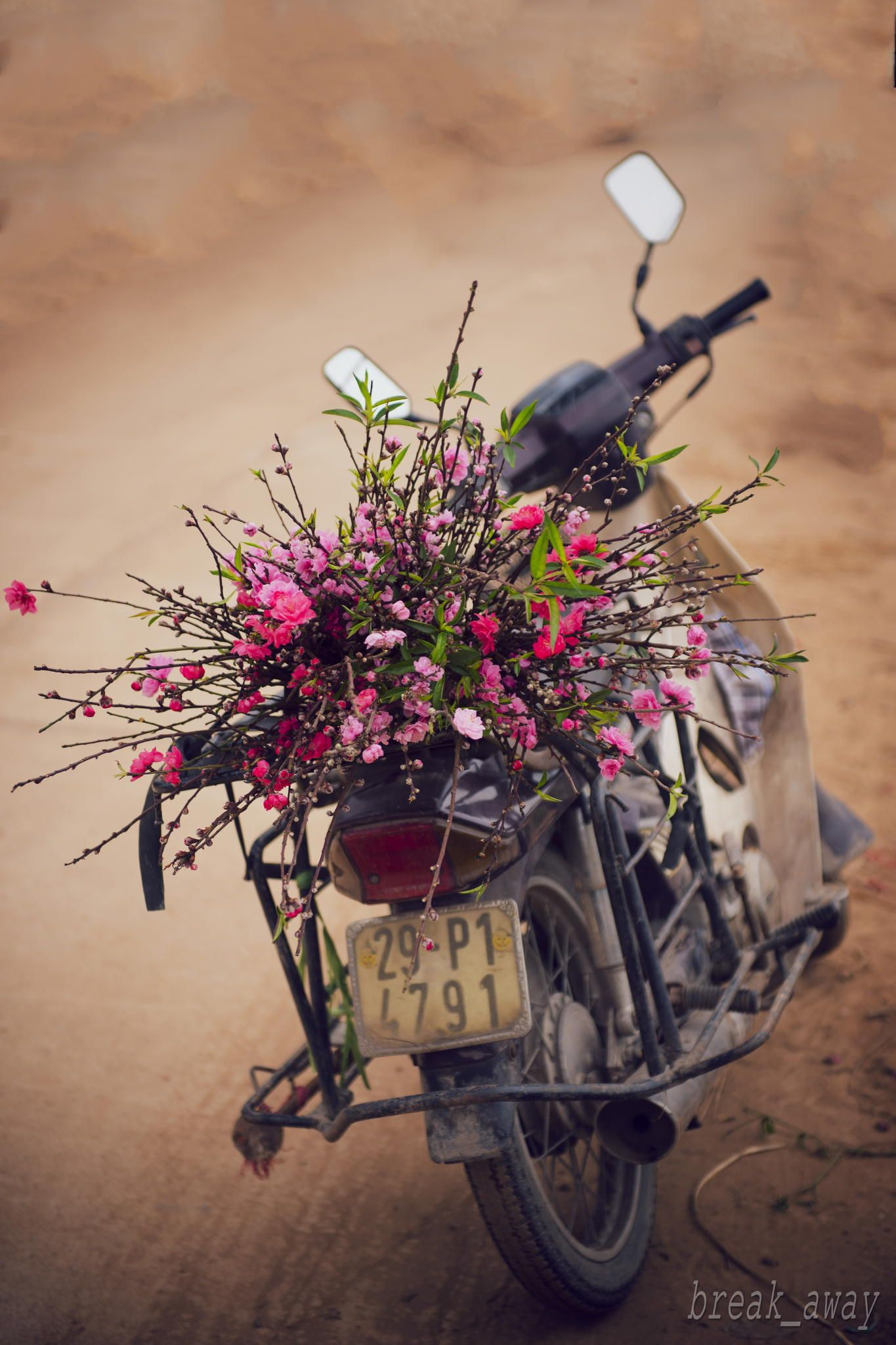 Spring In Hanoi Vietnam I Love To Ride My Bicycle Tricycle Or
