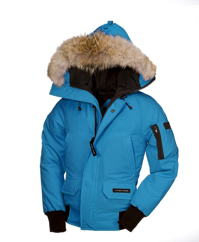 Blue Topaz Canada Goose Chilliwack Bomber Baby And Youth Fashion Canada Goose Parka Canada Goose Jackets