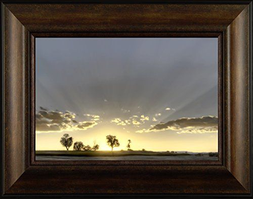 Illumination By Todd Thunstedt 20x26 Tree Sunshine Prover... https://www.amazon.com/dp/B0763CGL7B/ref=cm_sw_r_pi_dp_x_oFL3zbP9FY98Q
