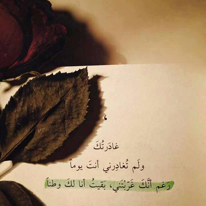 Pin By كنار الاغنية On الحب Favorite Quotes Quotations Words