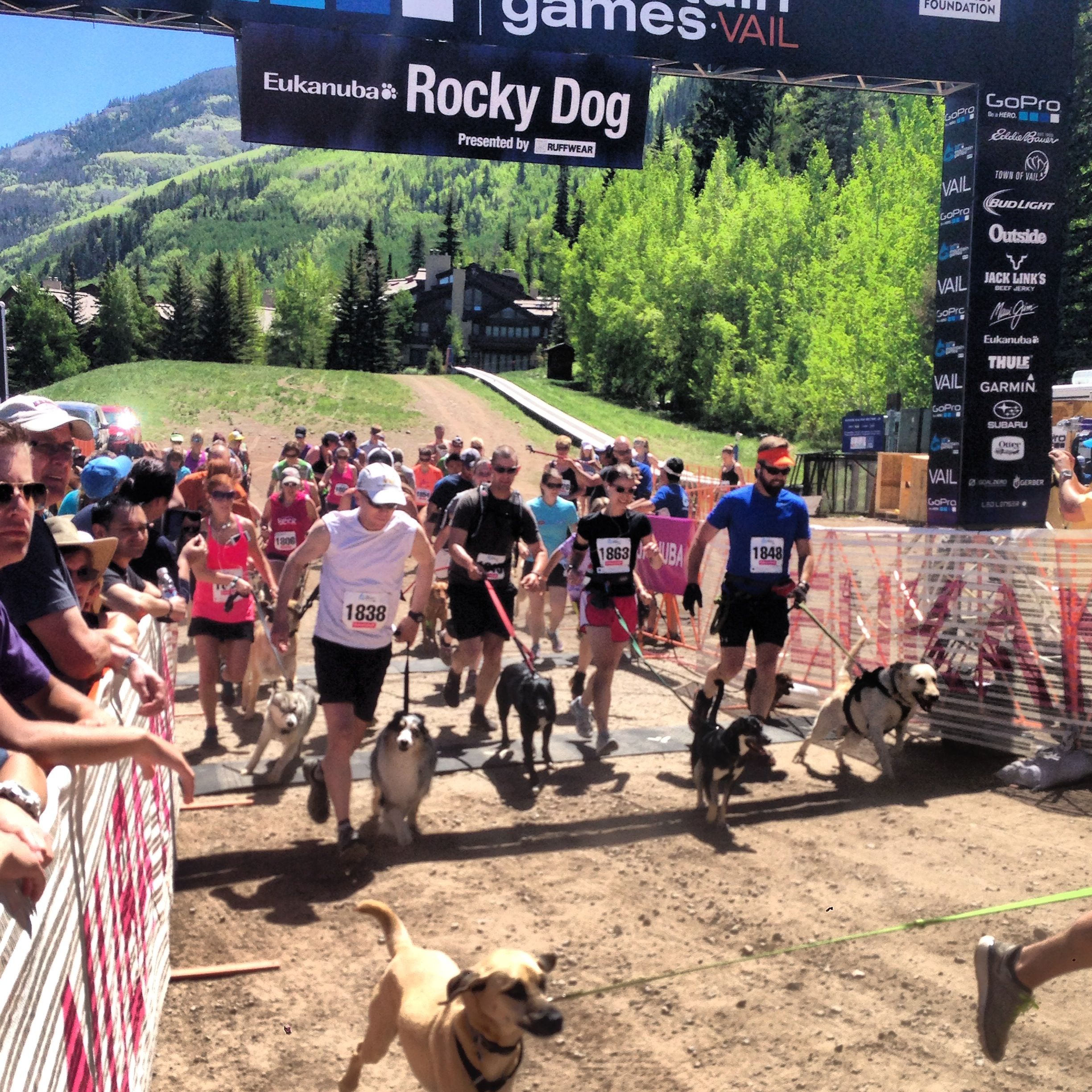 Outdoor Exercise For Dogs Faces Of The Dogs Of The Gopro Mountain Games Dog Gopro Dogs Dog Games