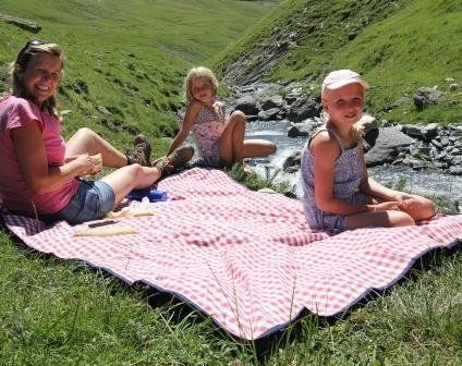 Extra Large Picnic Blanket Red Gingham By Just A Joy Http