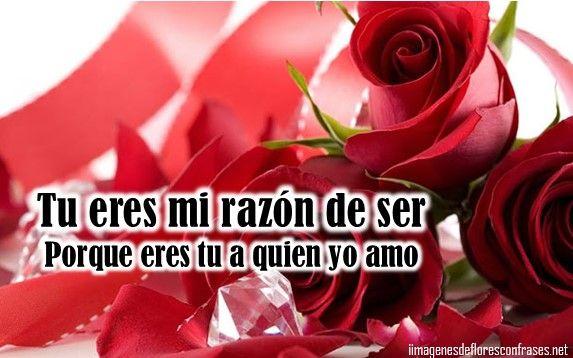 Frases Mas Bellas De Amor Frases Para Dedicar Regalos Para: Rosas Rojas Con Frases De Amor Bonitas Para Dedicar