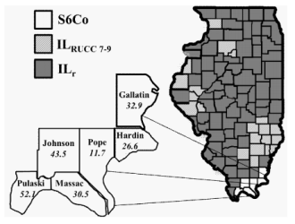 Within-state Geographical Variations in Renal Cell