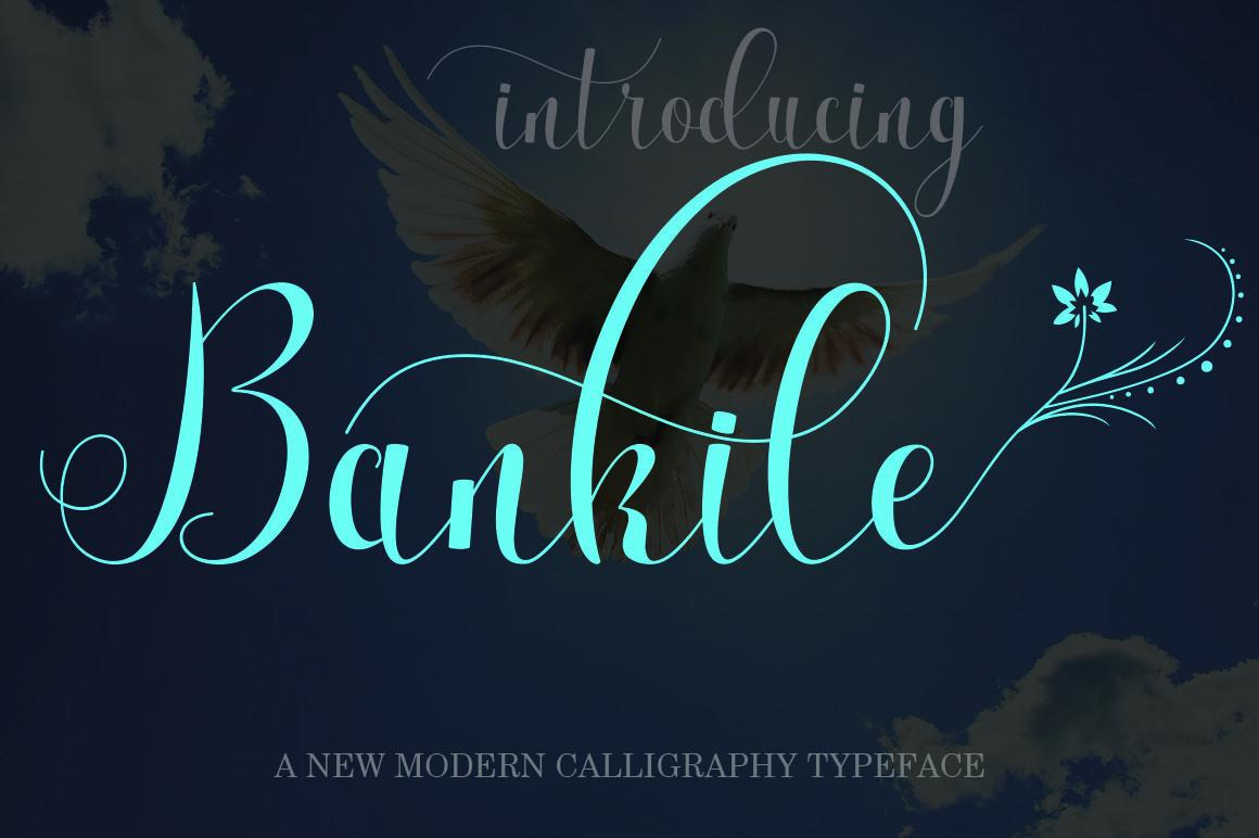 Big bundle font script colection Calligraphy fonts