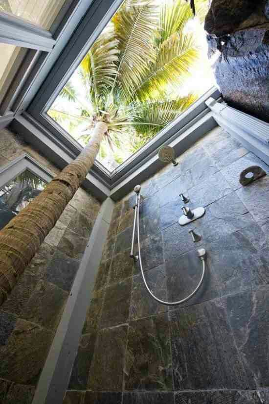 Conserve water...shower with your plants! Outdoor