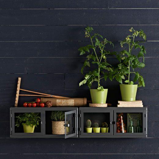 Beau RÅSKOG Grey Glass Door Wall Cabinet Filled With Small Green Plants. Ikea  RaskogPlant ...