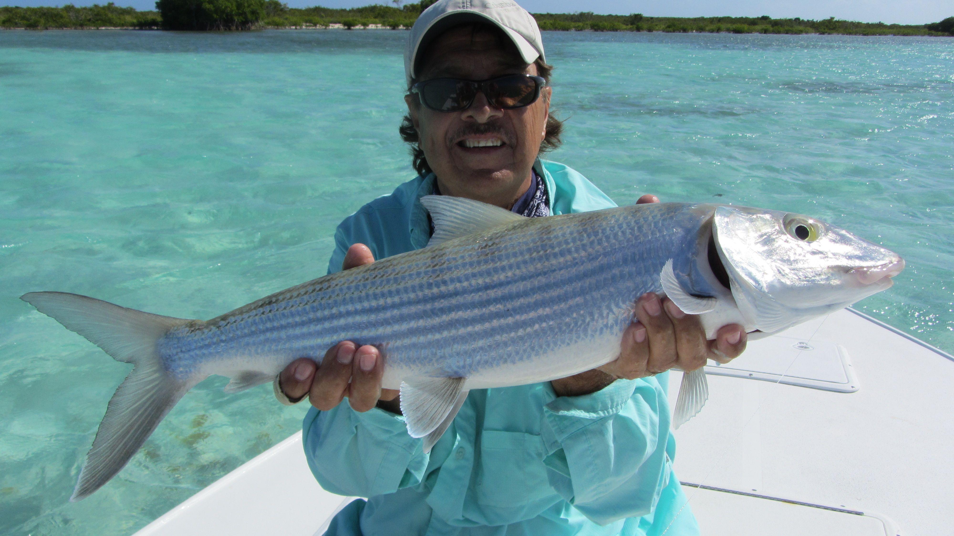 British Virgin Islands Fly Fishing Water Adventure Harbor Town