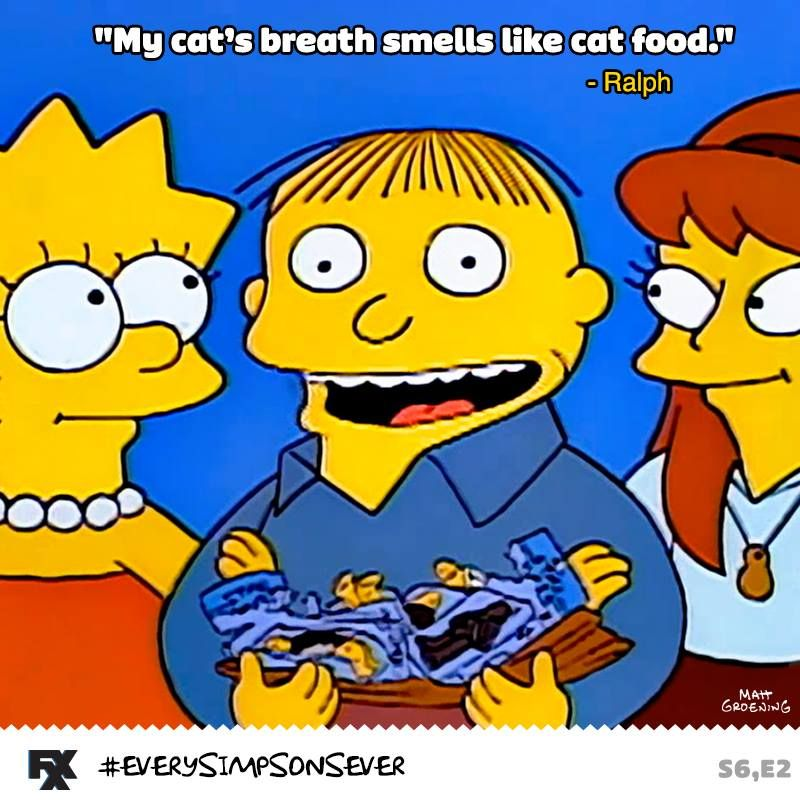 My Cats Breath Smells Like Cat Food Best Of Simpson The