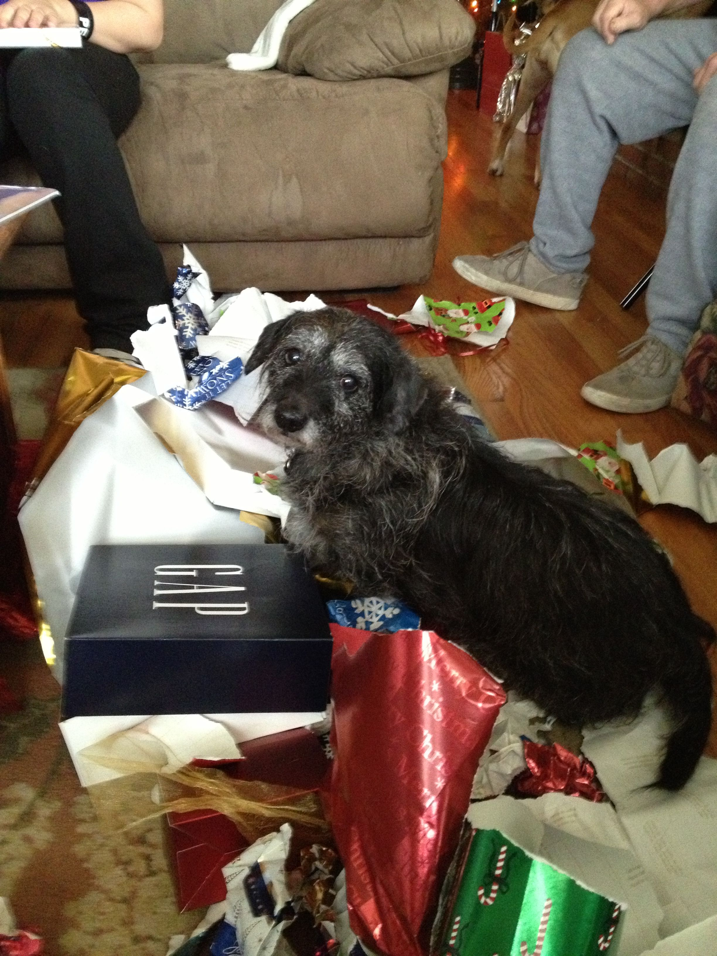 Any more presents?
