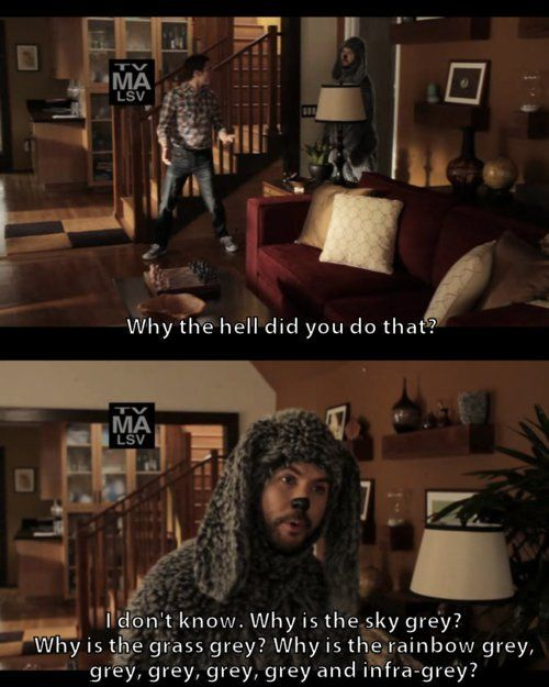 Wilfred Love Forever Ever I Will Love This Show Movie Tv The Funny Tv Shows