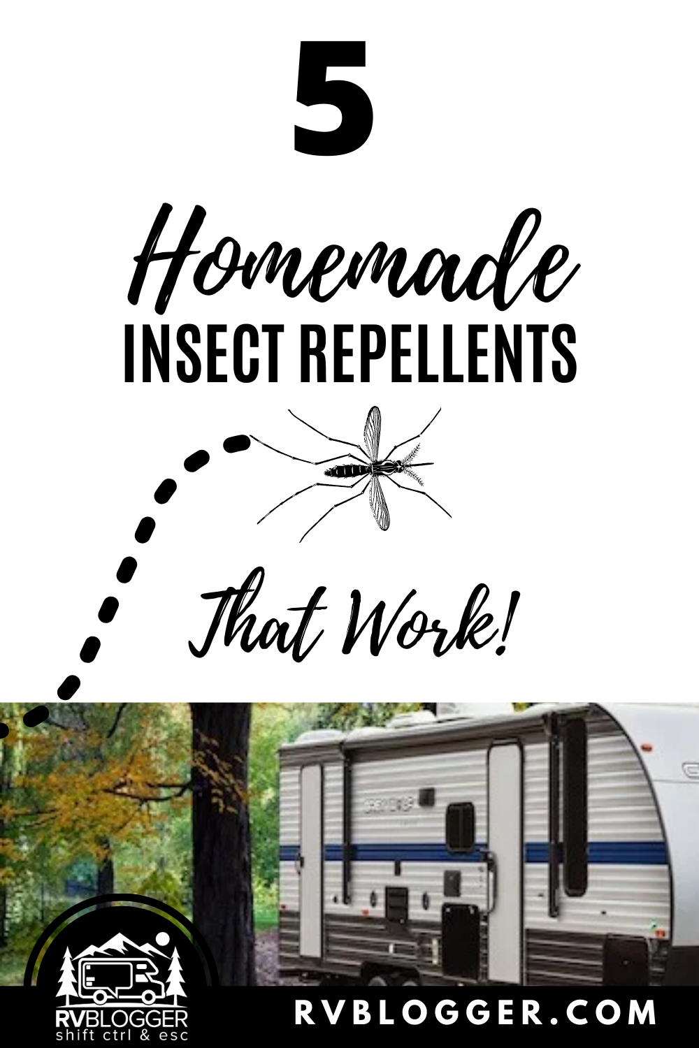 Photo of 5 Best Homemade Insect Repellents That Work!