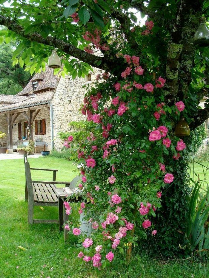 1001 ideas sobre c mo decorar un jard n peque o jard n for Como decorar un jardin rustico